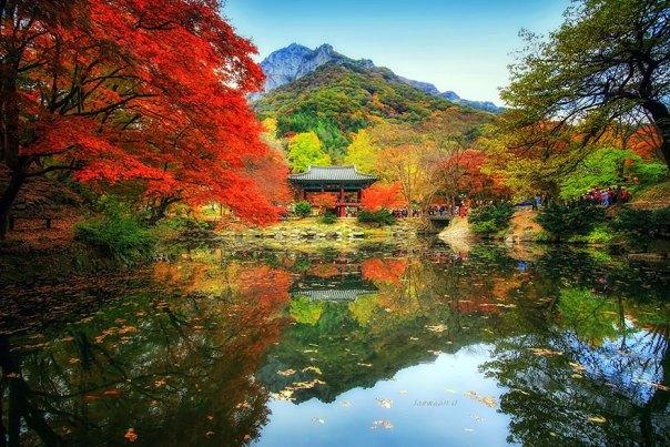 reflexión-paisaje-fotografía-jaewoon-u-12