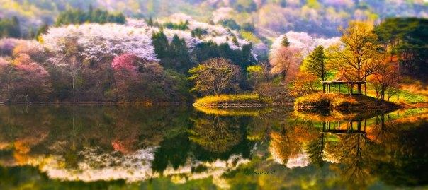 reflexión-paisaje-fotografía-jaewoon-u-23