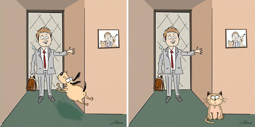 gatos-vs-cães-funny-ilustrações-bird-nascido-2