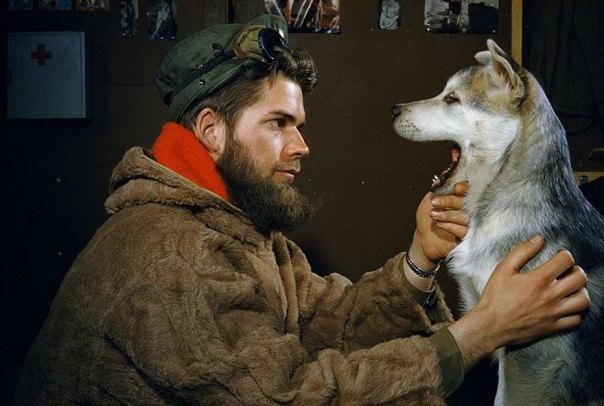 Un hombre examina los dientes de un 10 meses de edad Malamute del perrito cerca del polo sur de 1957