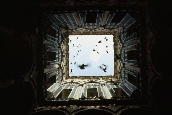 Una bandada de pájaros vuelan hacia arriba a partir de un patio cerrado en la Habana Vieja, Diciembre de 1987