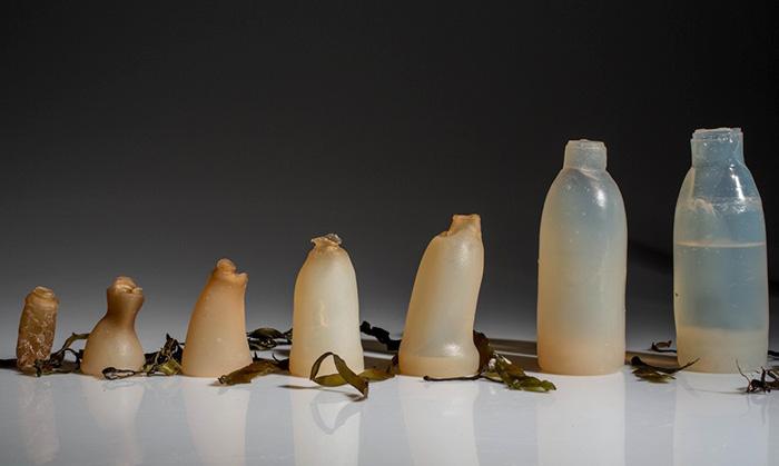 biodegradable-algae-water-bottle-ari-jonsson-5
