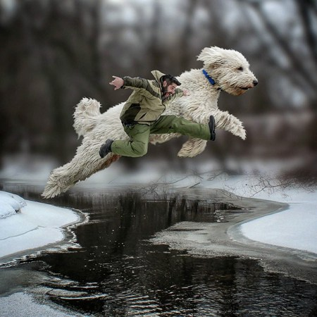 Photographer Photoshops His Dog Into A Giant | Bored Panda