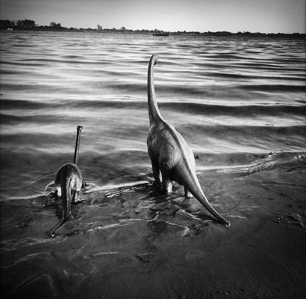 travel-photography-dinosaur-toys-dinodinaseries-jorge-saenz-166