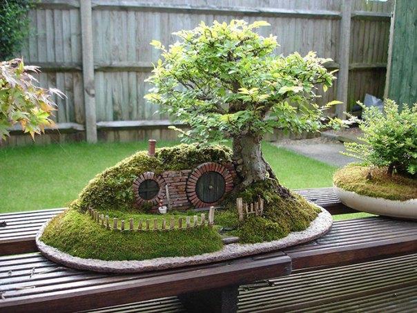 Bonsai Hobbit Agujero