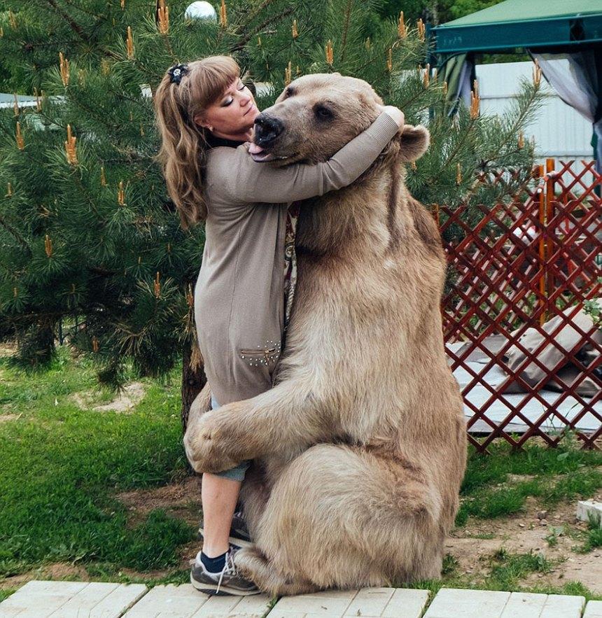 adottato-bear-russo-famiglia-Stepan-A13