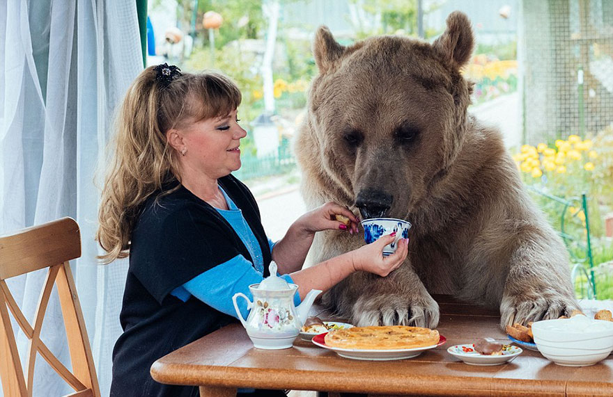 adopted-bear-russian-family-stepan-a3