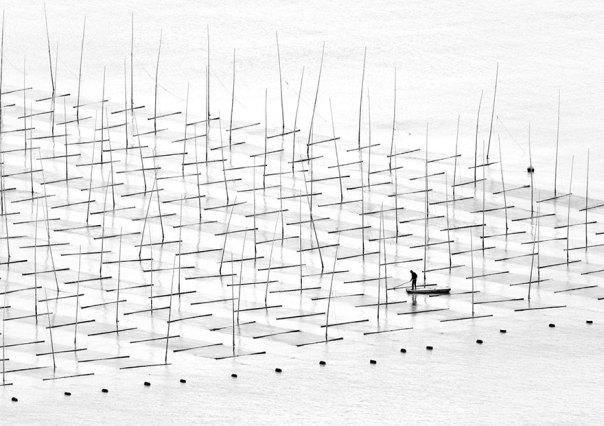 La agricultura mar, China