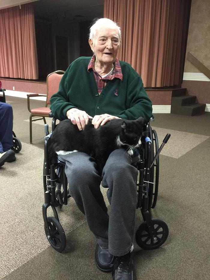 senior-cats-visit-nursing-home-pals-ohio-alleycat-resource-3