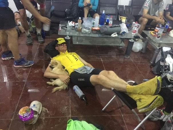 stray-dog-joins-race-gobi-dion-leonard-china-5