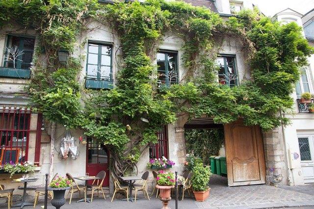 plant-urban-gardens-anyone-law-paris-4a