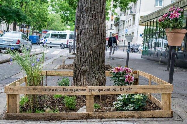 plant-urban-gardens-anyone-law-paris-5ajpg