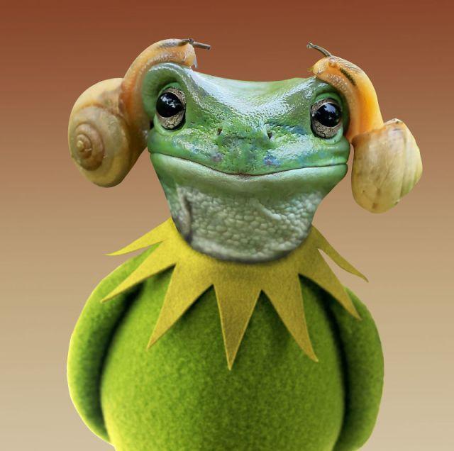 Princess Kermit