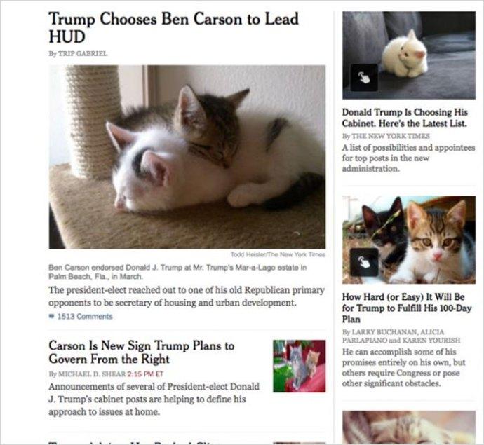 trump-chrome-extension-make-america-kittens-again-6