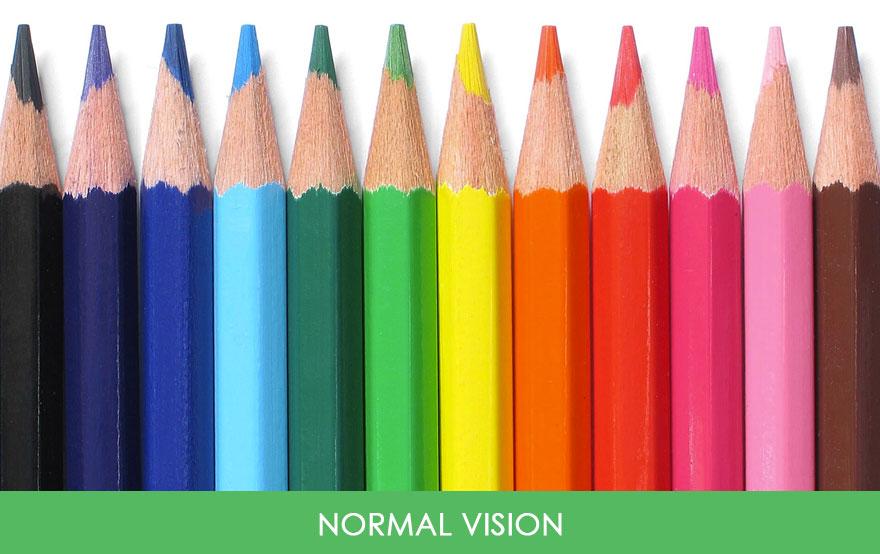 Farklı tipler-renk-körlük-fotoğraflar-26