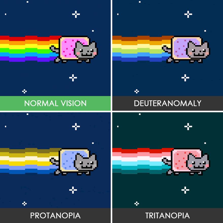 Nyan kedi