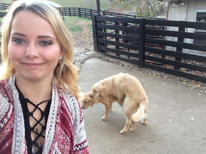 Went To Take A Selfie With The Dogs And...