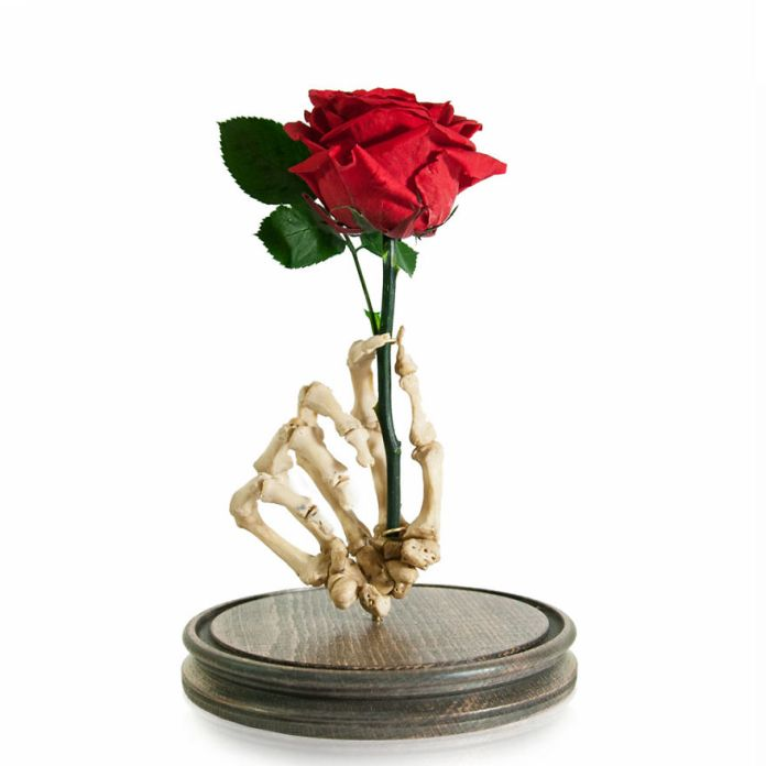 red taxidermy rose 58ad9cbc9a61c  880 - Wow, Seniman Ini Ubah Kerangka Manusia jadi Karya Seni!