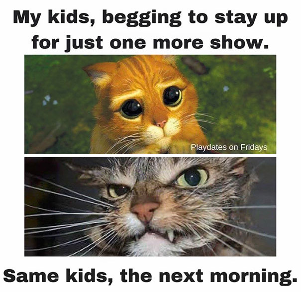 202 Parenting Memes That Will Make You Laugh So Hard It Will Wake