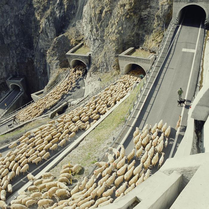 heep                                                           Going Through                                                           San Boldo                                                           Pass, Italy