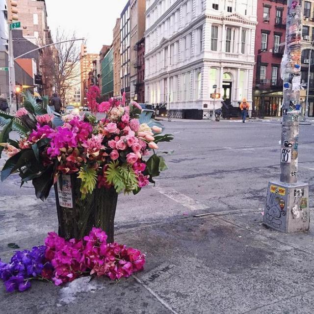 trash-cans-flowers-new-york-lewis-miller-7