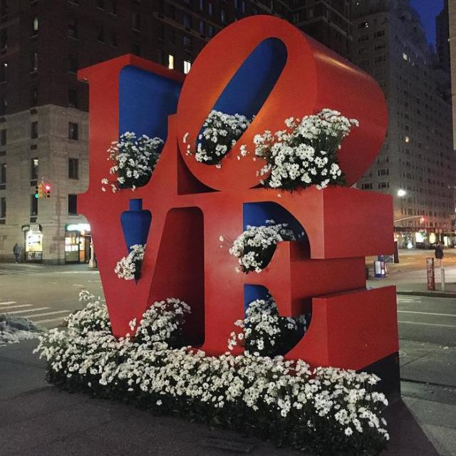 trash-cans-flowers-new-york-lewis-miller-8
