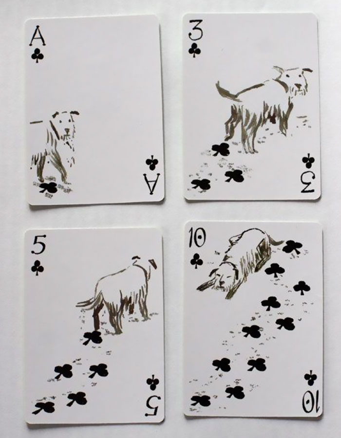 Pack-of-dogs-playing-cards-john-littleboy-3