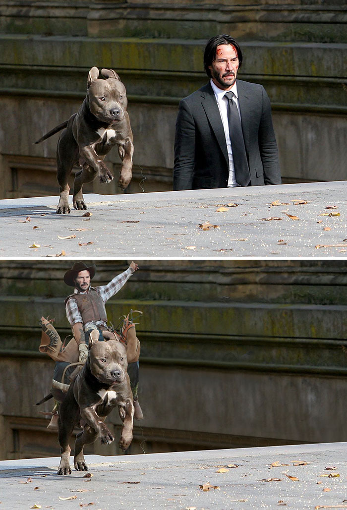 Keanu Reeves And A Dog