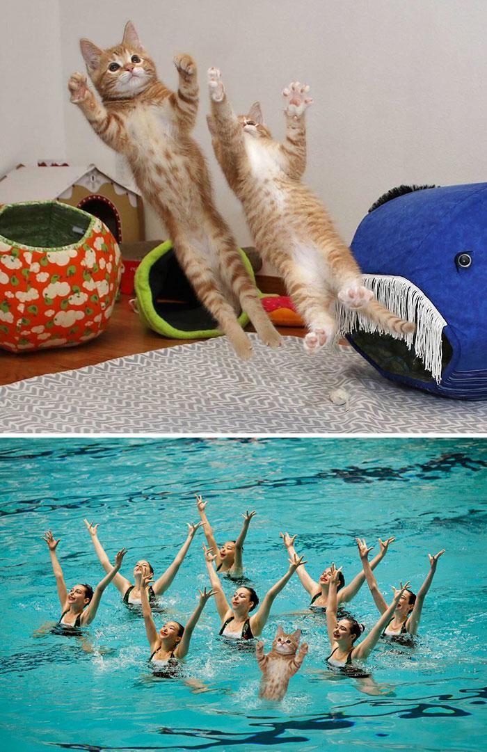 Professional Synchronize Swimmer
