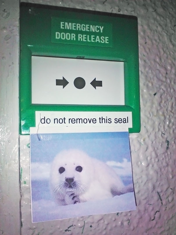 Do Not Remove This Seal