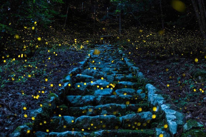 Foto-foto Terbaik dari Lomba Foto National Geographic Traveler 2017