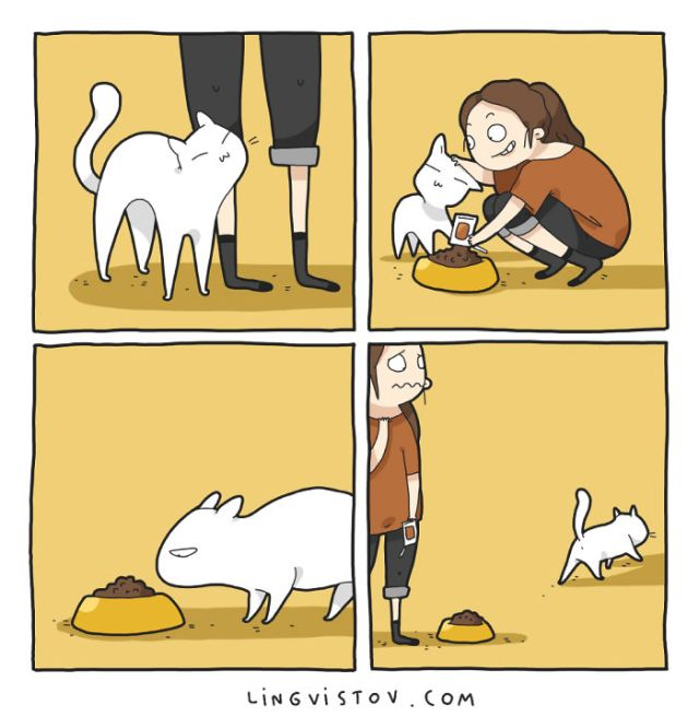 I Illustrate What It's Like To Live With A Cat In dieciocho Comics