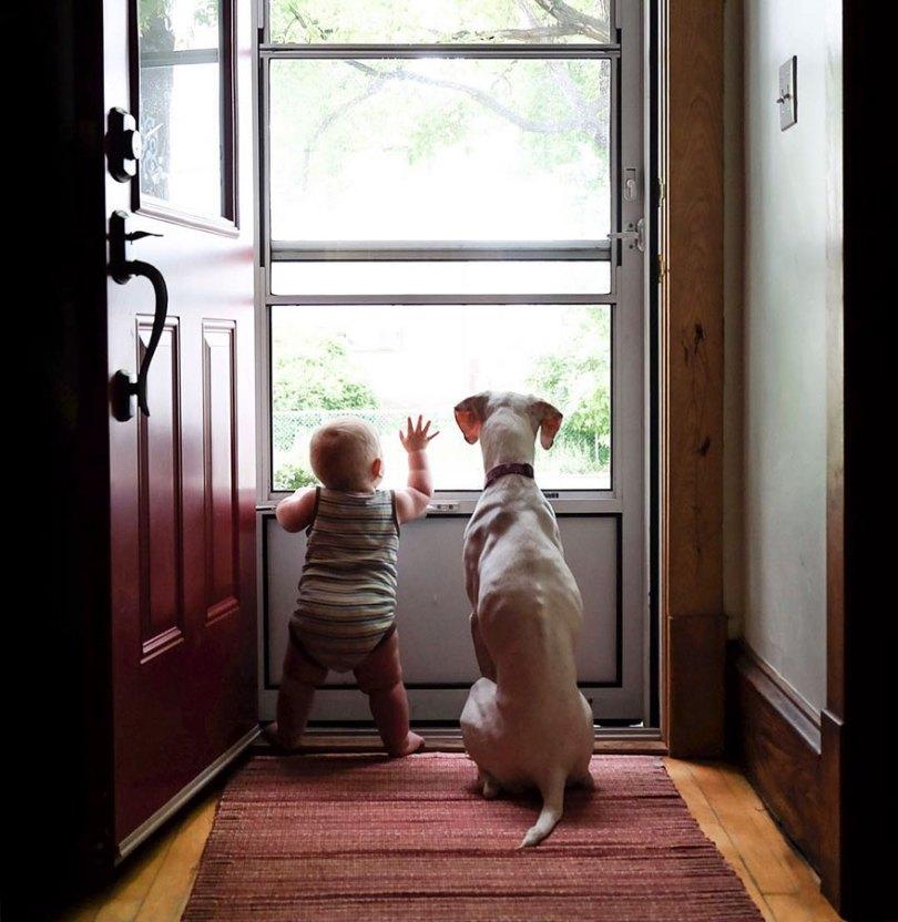 abusado-salvamento-cão-amor-criança-nora-elizabeth-spence-34