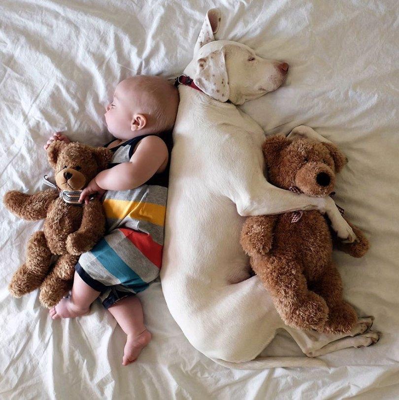 abused rescue dog love child nora elizabeth spence 35 - O melhor amigo do homem
