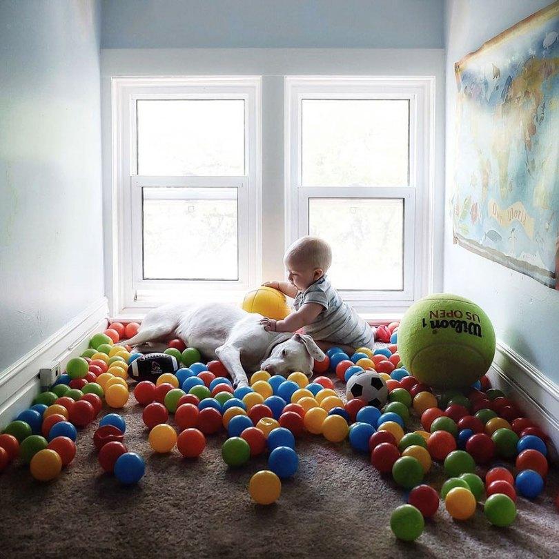 abused rescue dog love child nora elizabeth spence 36 - O melhor amigo do homem