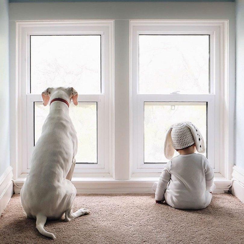 abused rescue dog love child nora elizabeth spence 38 - O melhor amigo do homem