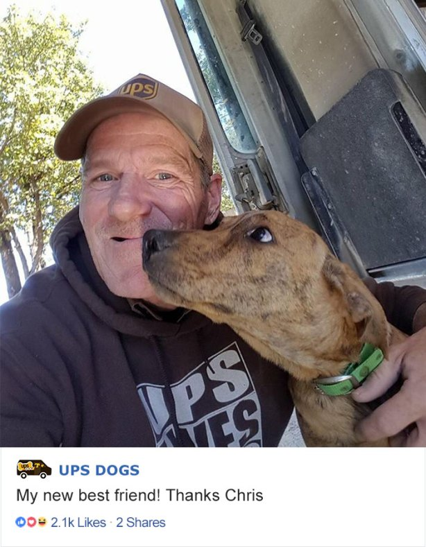 ups-dogs-facebook-group-drivers-meet-routes-sean-mccarren-06