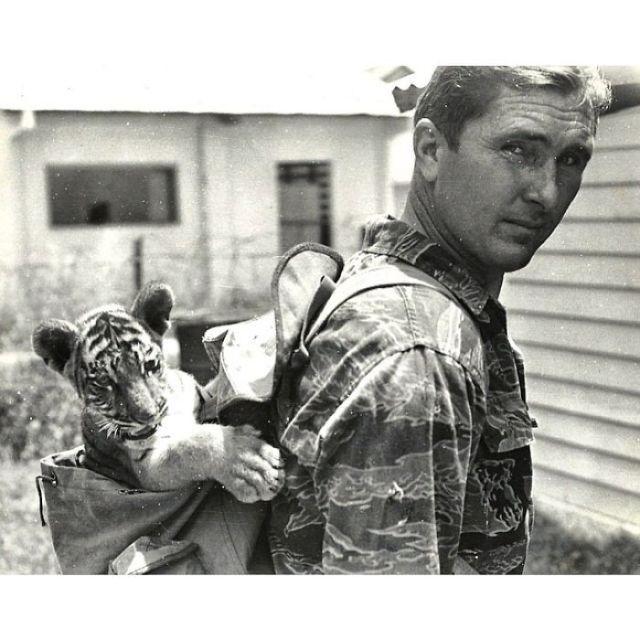 Ojalá Pudiera Ser La Mitad De Genial Que Mi Abuelo Éste Día De Los Caídos, Hacia 1960