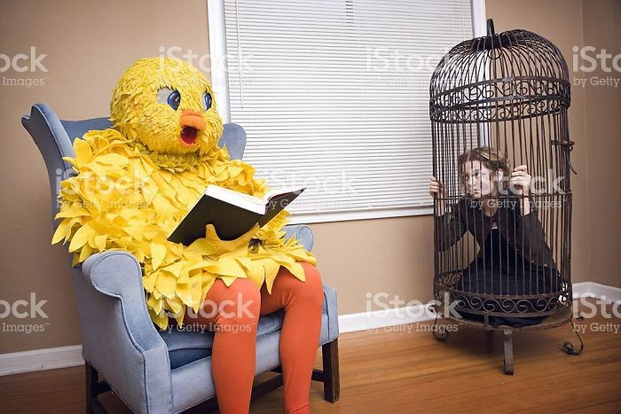 """I Searched For """"A Large Bird"""" On Google And Was Not Disappointed"""