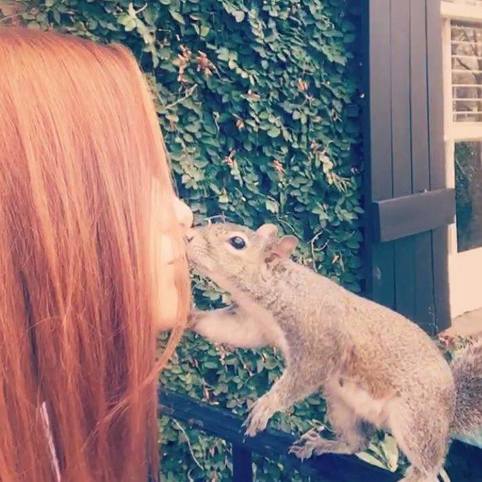 squirrel-come-back-save-family-bella-brantley-harrison-36