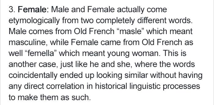 create-patriarchal-language-linguistic (6)