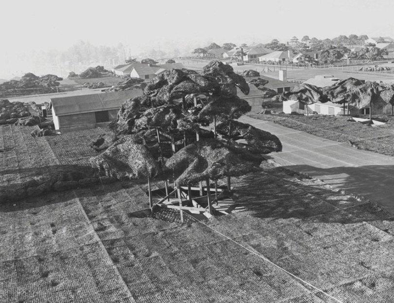 "boeing fake rooftop town world war seattle 7 5aa6555edba7a  880 - 2ª Guerra: EUA projeta um ""bairro falso"" para eliminar possíveis ataques aéreos"