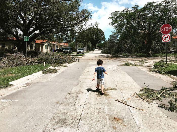 My Post-Irma Street, The American Experience Finalist