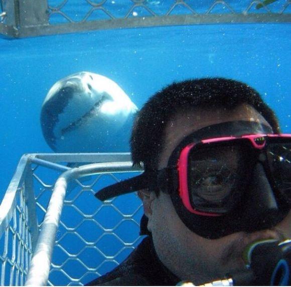 Selfie Photo Bomb... Nailed It