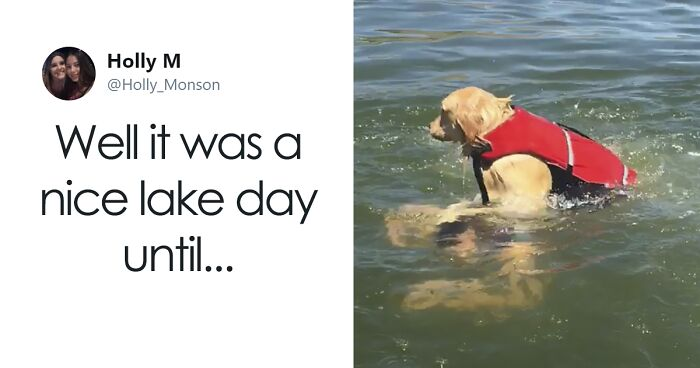 Internet Is Laughing Out Loud At The Way This Nice Lake Day