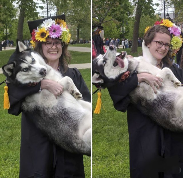 My Boyfriend Managed To Sneak Our Floofer Through A 30 Minute Trail Behind The Stadium So She Could Be At My Graduation