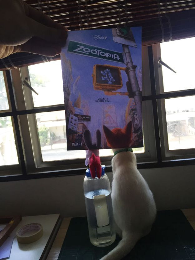 """IMG_5357i-5b3b82d95857c__880 Photographer Follows Cats Around To """"Insert"""" Them Behind Famous Movie Posters, And The Result Is Purrfect Design Random"""