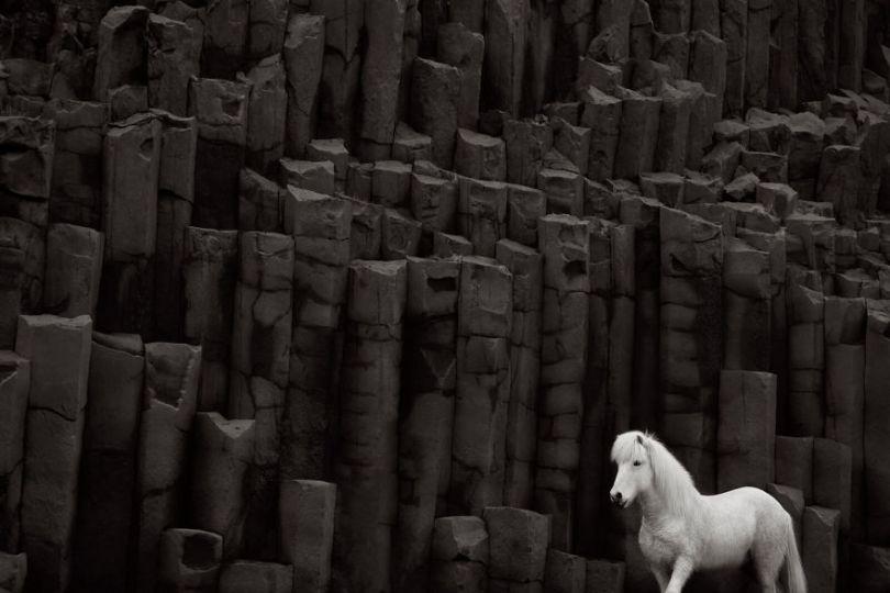 animal photography icelandic horses in the realm of legends drew doggett 22 5b5afbf98ba82  880 - Encantadora série de fotografias de Drew Doggett e os cavalos islandeses
