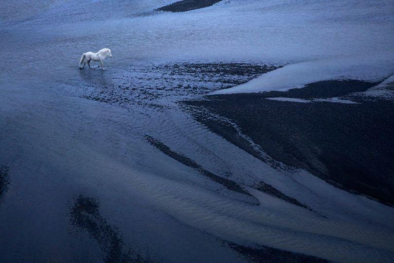 animal photography icelandic horses in the realm of legends drew doggett 29 5b5afc06e4e11  880 - Encantadora série de fotografias de Drew Doggett e os cavalos islandeses