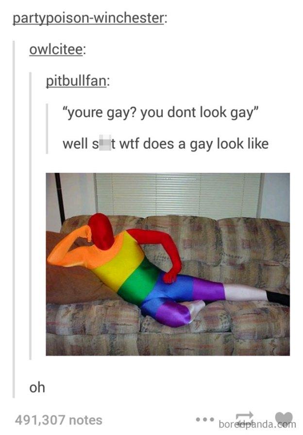 lgbt-funny-comebacks-47-5b559f5dbe11e__700 20+ Of The Best Comebacks To Homophobic Comments Ever Design Random